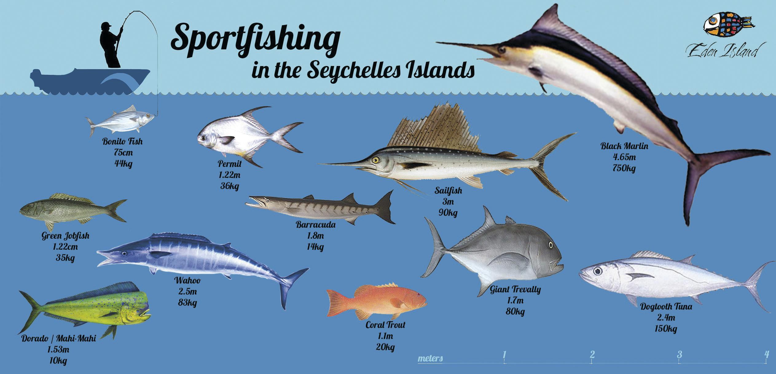 sportfishing