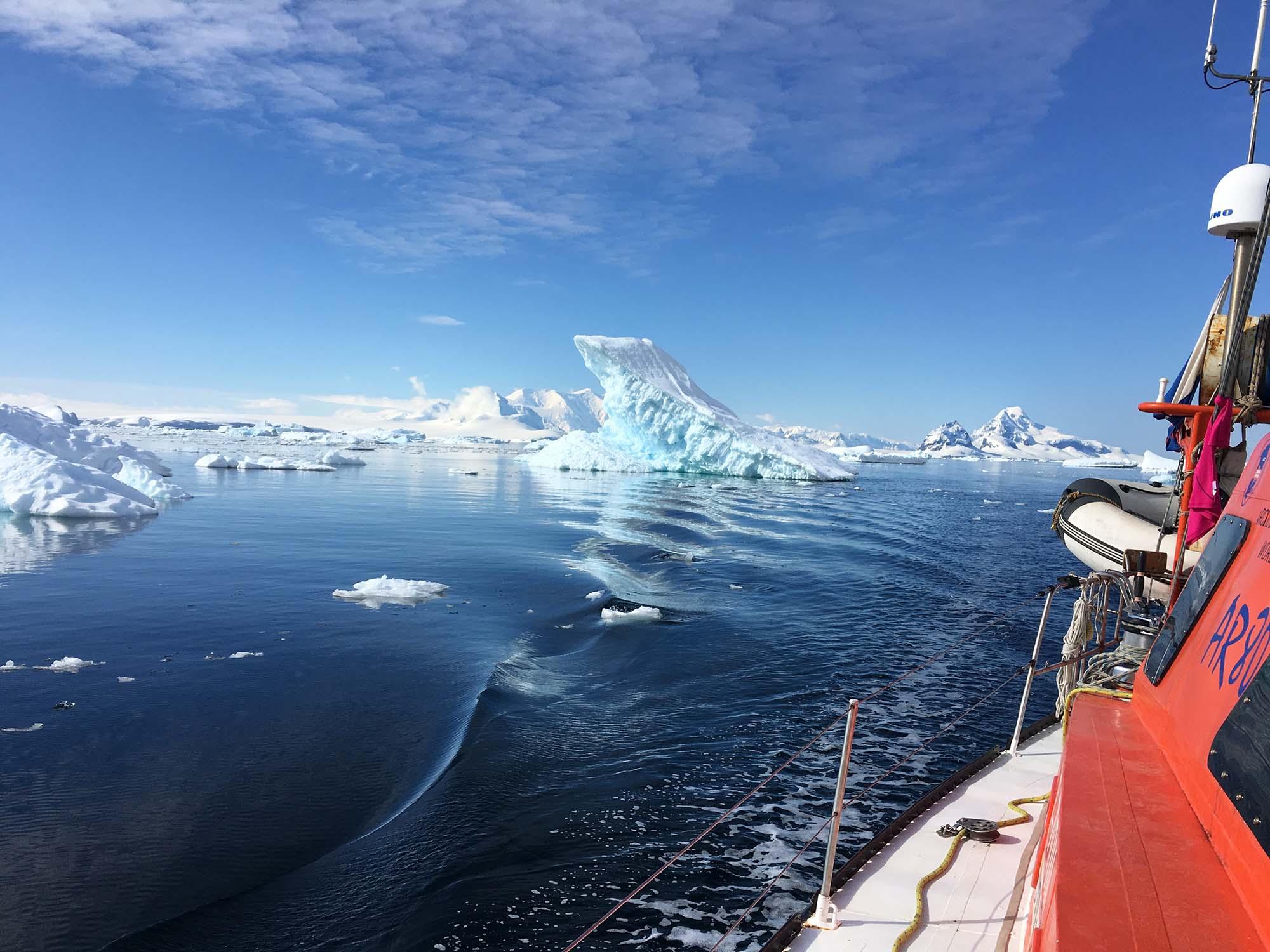 Антарктичні льоди